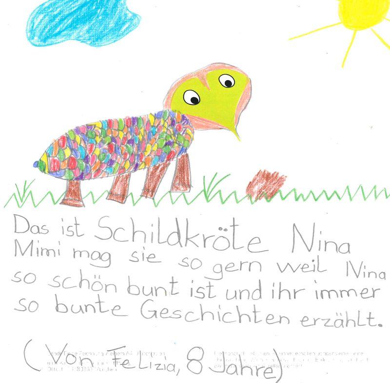 Schildkröte – Felizia, 8 Jahre (Gewinner Juni 2018)