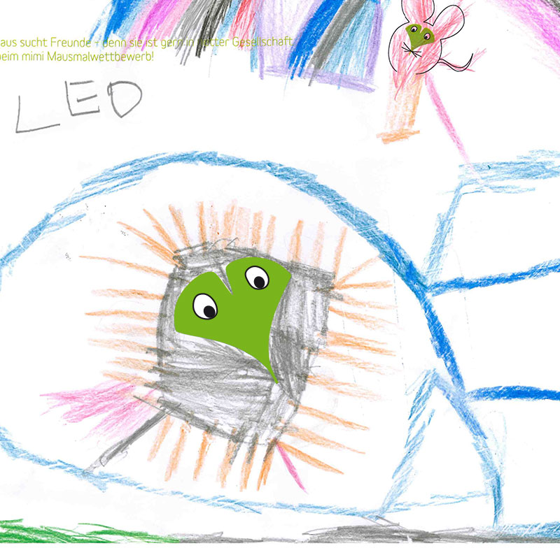 Igel – Leo, 3 Jahre (Gewinner Juli 2017)